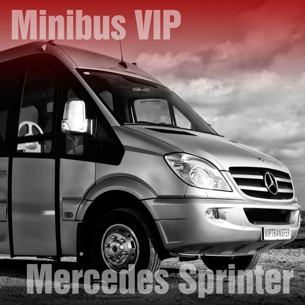 MINIBUS SPRINTER FLOTA VIP