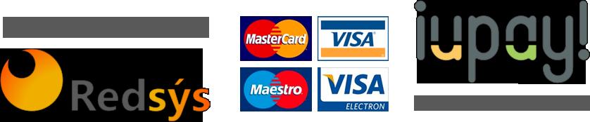 pago-online-seguro-visa-redsys-iupay-alicanteviptransfer