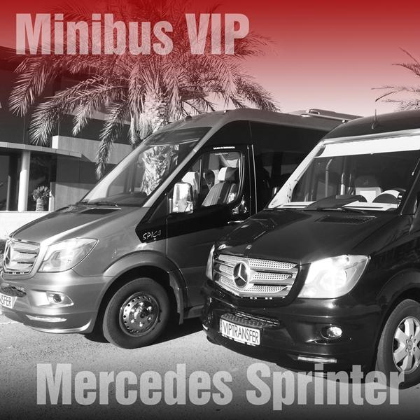 VIP Minibus Mercedes Sprinter