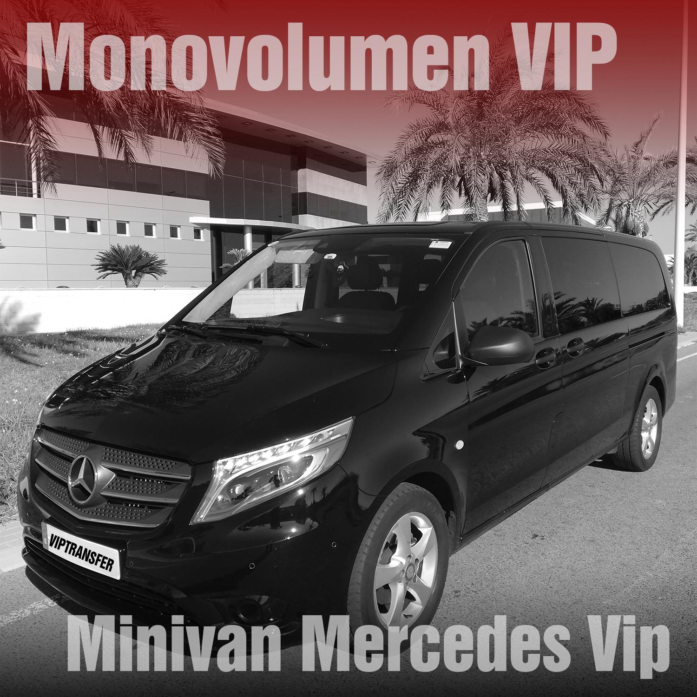 VIP Minibuss Mercedes Viano